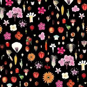 Billigtpyssel.se | Mönstrad Trikå 150 cm - Frön Och Blommor Svart