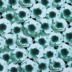 Billigtpyssel.se | Mönstrad Trikå 160 cm - Blommor Flaska