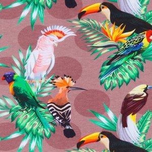 Billigtpyssel.se   Mönstrad Trikå 160 cm - Tropiska Fåglar Ljusbrun