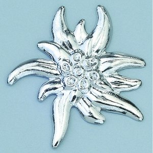 Billigtpyssel.se | Smycke ø 23 mm - silverfärgad edelweiss