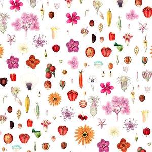Mönstrad Trikå 150 cm - Frön Och Blommor Vit