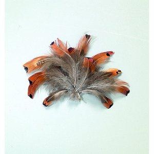 Fasanfjädrar 10 cm - naturlig 2 g
