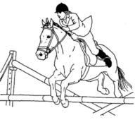 häst målarbild